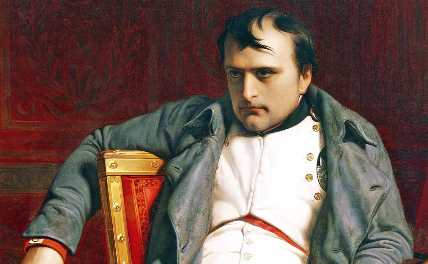a biography of a french military genius napoleon bonaparte Napoléon bonaparte was and still is one of france's most astounding leaders   napoleon was also a military genius, one of the greatest generals in history.